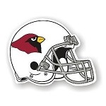 Arizona Cardinals 12